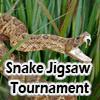 Змеиный турнир